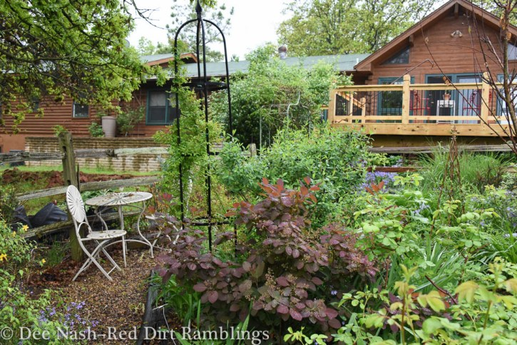 More spring garden 2015 Red Dirt Ramblings--Dee Nash