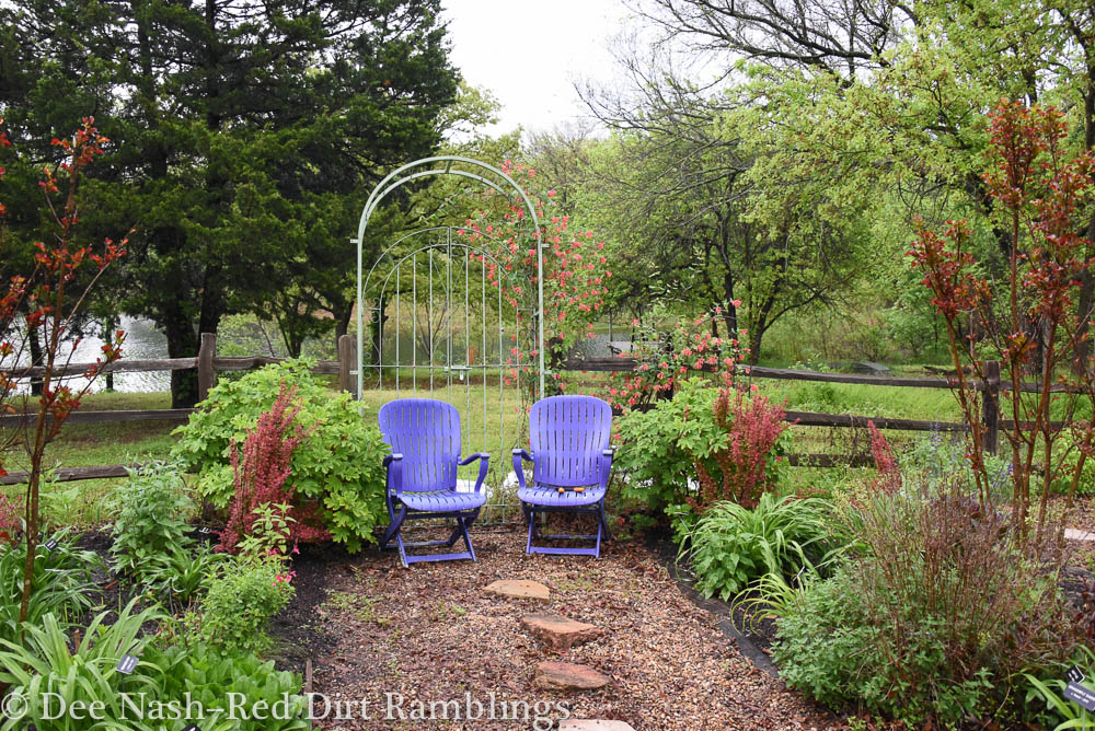 Purple chairs with Ruby Slippers hydrangea and Rocket Orange barberry