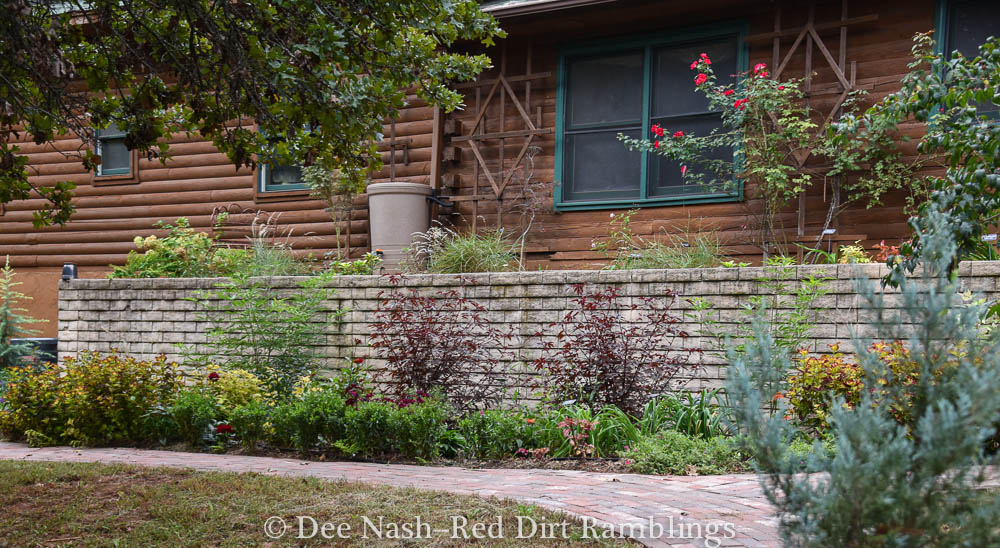 The newest garden border I planted this year. I'm thinking about painting that wall this fall. Don't know what color though.
