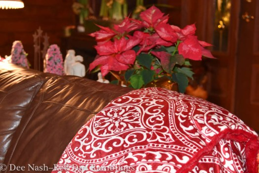 Red and white Christmas throw and poinsettia.