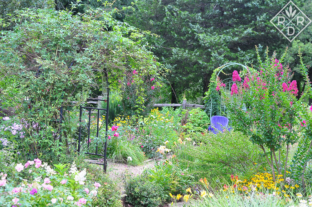 By July, it's difficult to see the structure in the back garden for all of the billowy plants.
