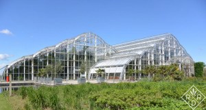 Temperate house, another view.