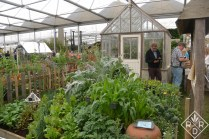 If you liked greenhouses and glasshouses, Chelsea was the place to be. These are only a few of them.