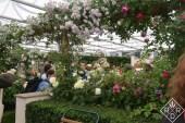 David Austin exhibition garden-2