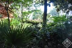 The Dooley Garden
