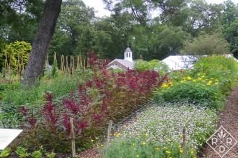 Cutting garden at Hillwood in Washington, D.C.