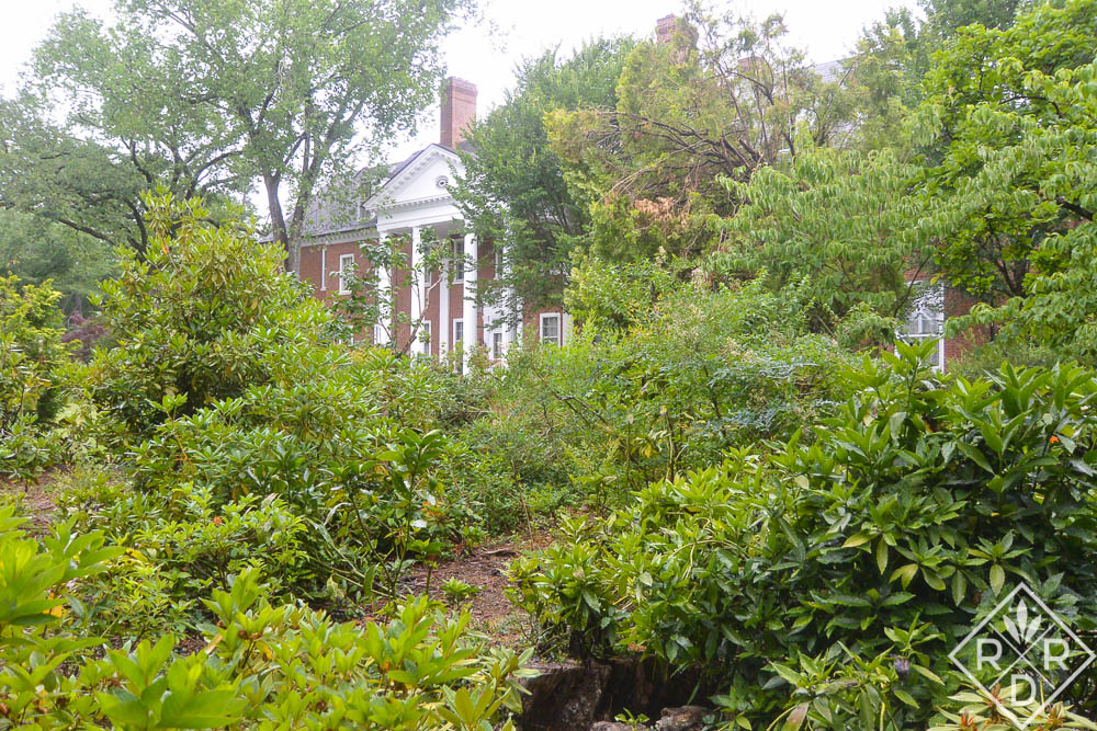 A visit to Hillwood