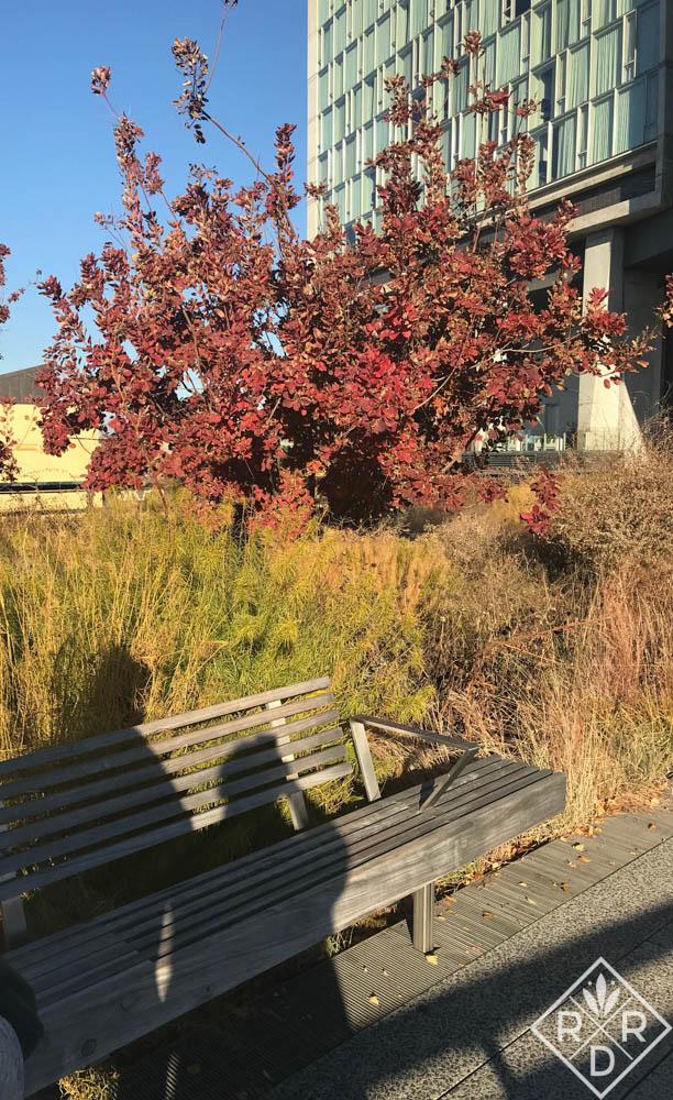 A trip to High Line Park