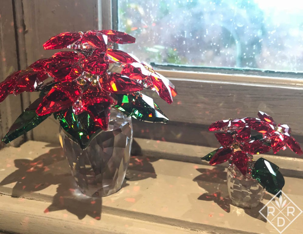 Swarovski crystal poinsettias Bill bought in New York. He fell in love with their sparkle.