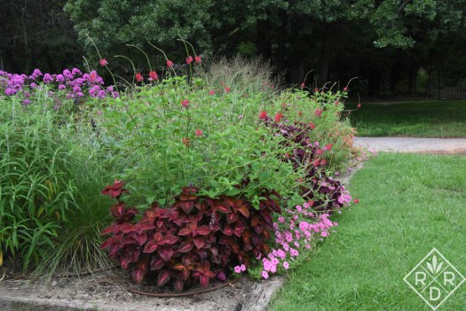 The front garden bed facing the street late last summer.