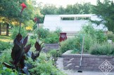 Potager and greenhouse.