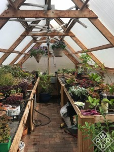 I cleaned the inside of the greenhouse and grouped the plants by color and type for easier transplanting outside in late April.
