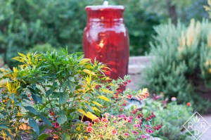 The potager surrounds the red fountain which is the focal point of my vegetable garden.