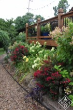 Side border next to the deck has Tightwad Wad crapemyrtles, Little Lime® and Quick Fire® hydrangeas. There are also daylilies and Mexican feather grass in this border.
