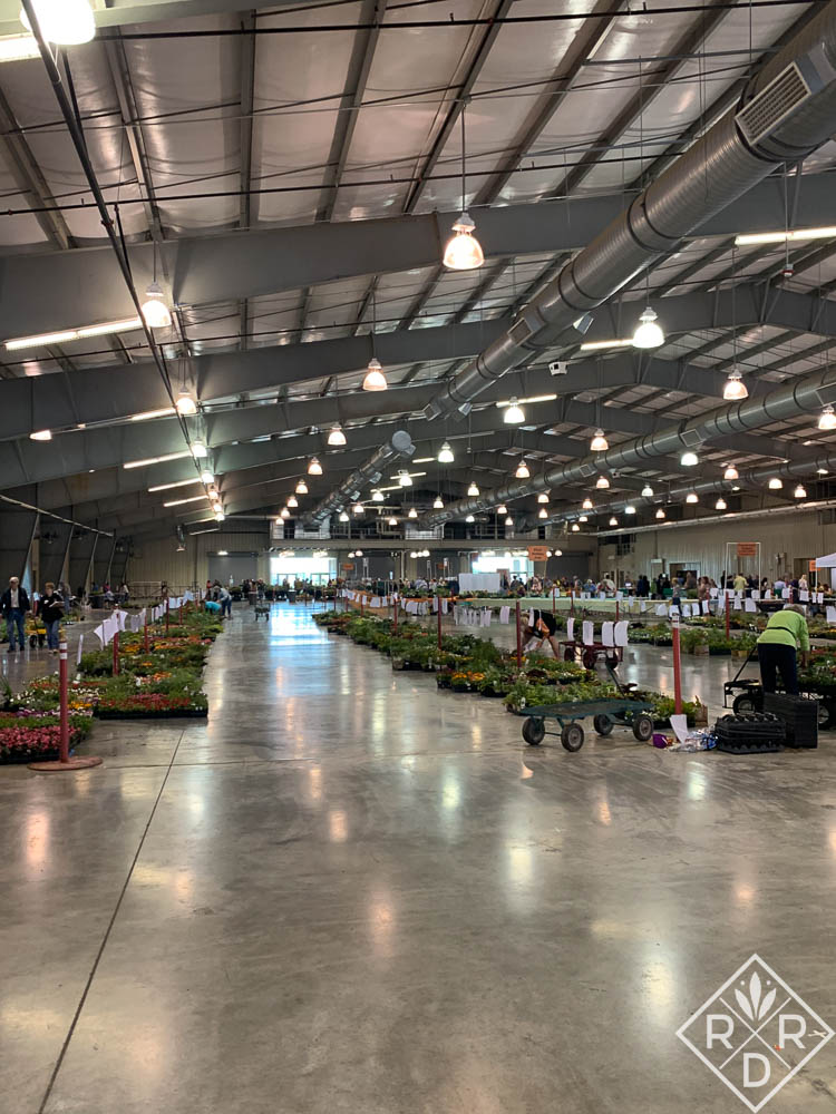 Plants at the Tulsa Master Gardeners' plant sale. I bought my perennial milkweed here. I bought my tropical milkweed from Bustani Plant Farm.