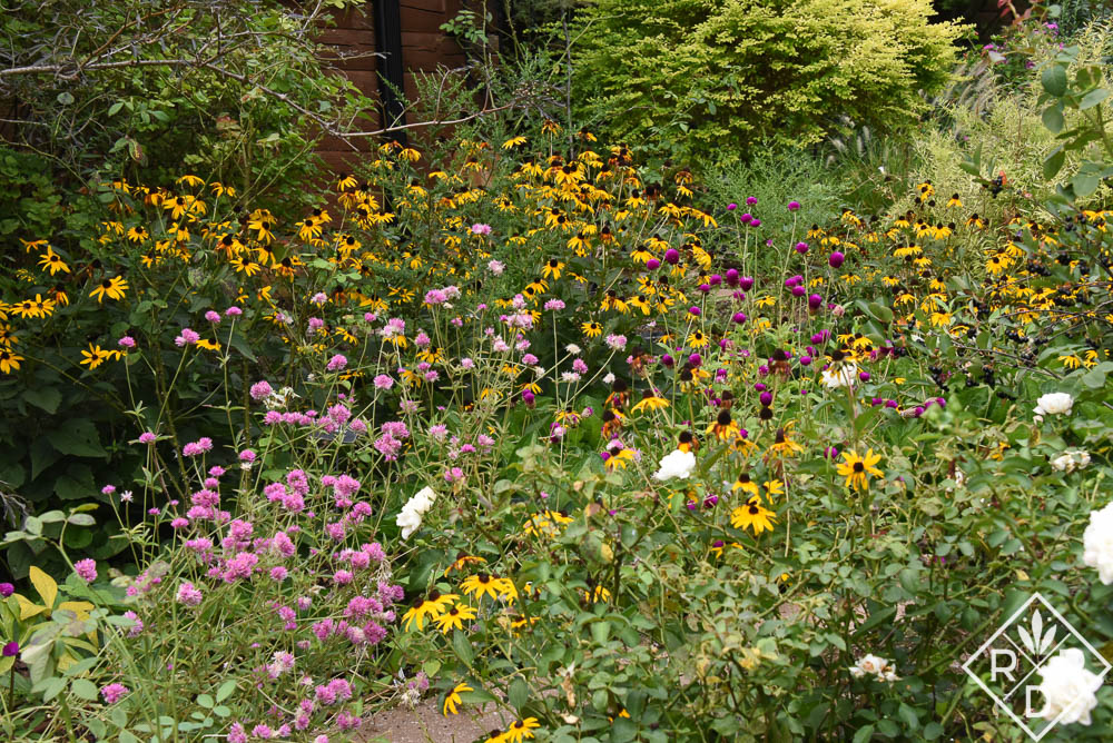 Garden Bloggers' Bloom Day. Meadow flowers in the tiered garden are spectacular this year.