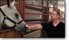 ben_horse_72