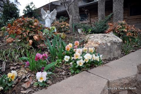 The front garden in 2010.