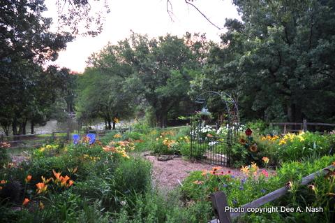 The back garden at daybreak.