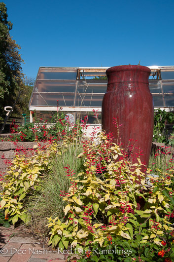 The red fountain needs to be taken down to find a leak. That will be quite the garden chore. Last year, we left it in place and heated it.