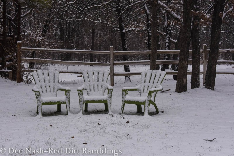Green chairs in the front lawn.