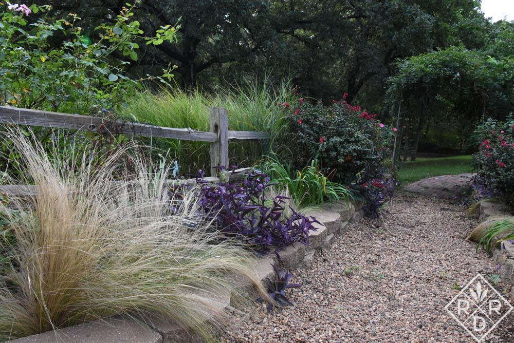 Side borders with Mexican feather grass, Nassella tenuissima (f/k/a Stipa) and Setcreasea pallida 'Purple Heart.'