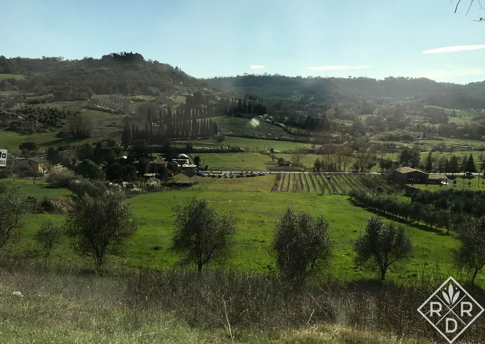The gorgeous Italian countryside in March. It will be even more beautiful in June.