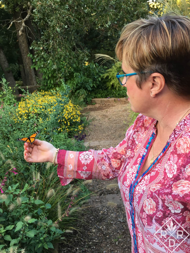 Releasing a Monarch butterfly into my garden. It didn't seem to want to go. Thanks to Father Novak for taking such a lovely photo!