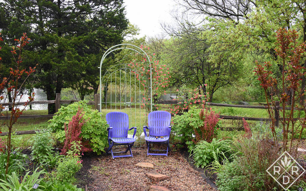 One of the places I often go is down the main walk of the garden where I sit for a while in the purple chairs.