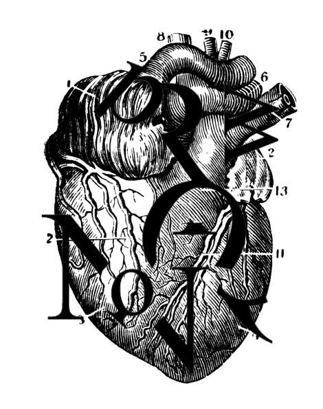 heart vispo two