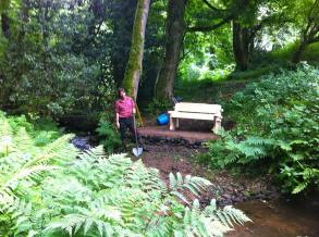 woodland stream beach and rustic bench created 2013