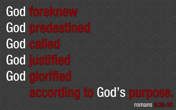 Romans-8 28-30