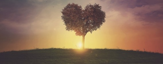 church growth through love