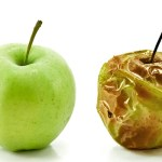 What is the good fruit of Matthew 3:8-10? Is it good works?