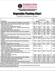 Fall vegetable garden redeem your ground rygblog also how to prepare for rh redeemyourground