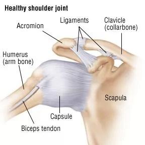 Shoulder Sprain Shoulder Strain Treatment in NJ   Pain ...