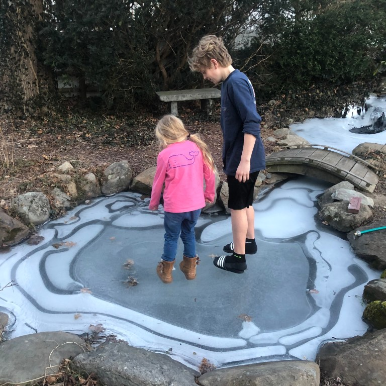 kids looking at koi through ice