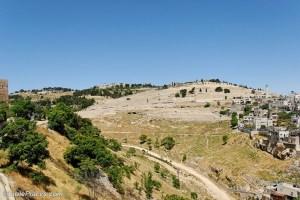 Mt Olives