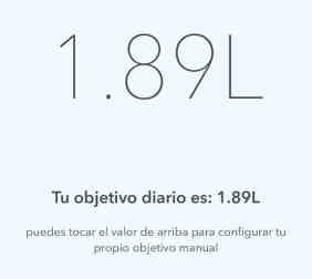 WaterMinder - Review - Objetivo diario