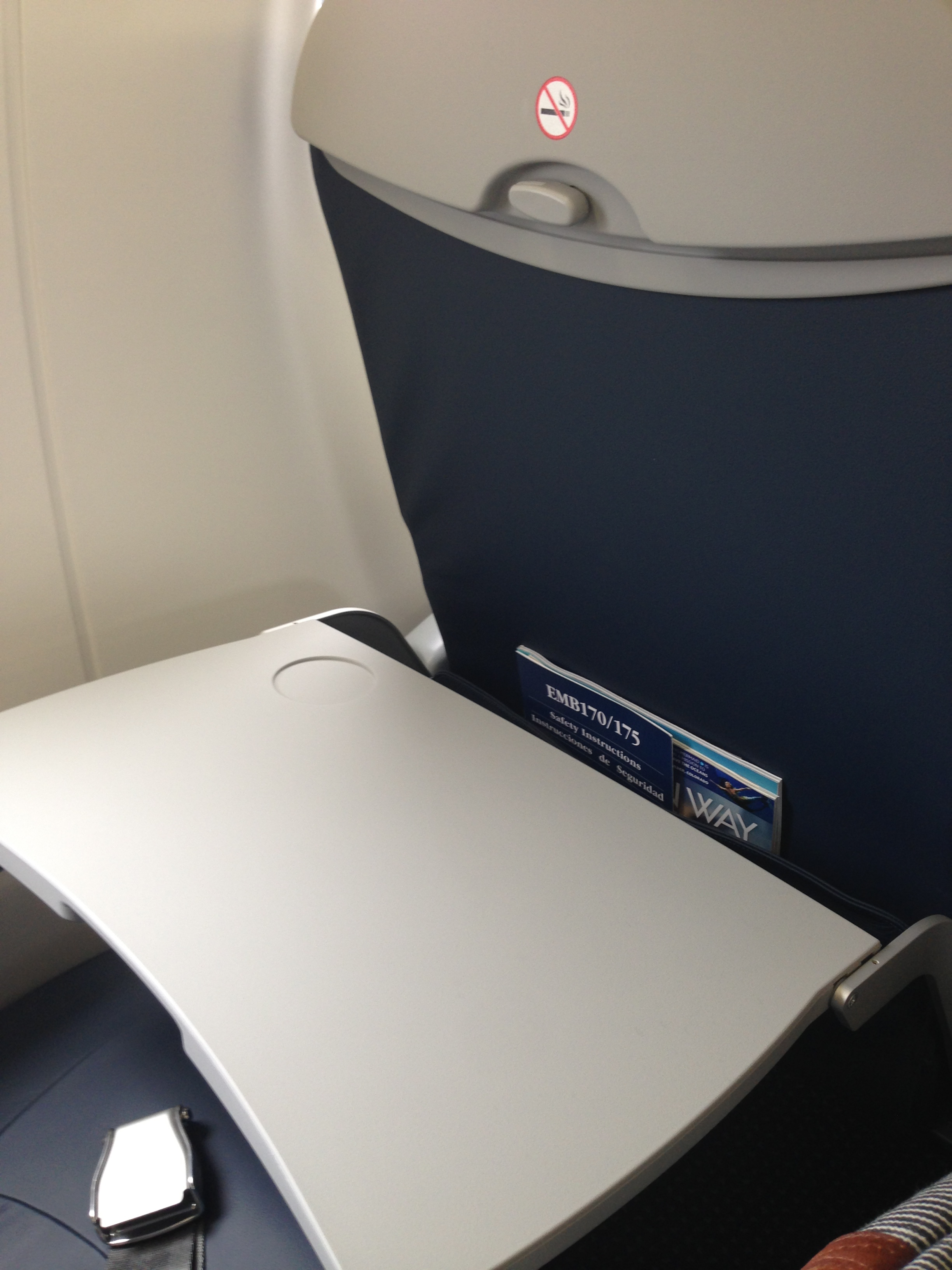 Existing Solutions  Redesigned Airplane Tray Tables