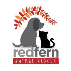 Red Fern Animal Rescue