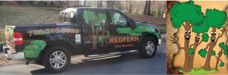 The #1 Tree Service in Roswell, GA