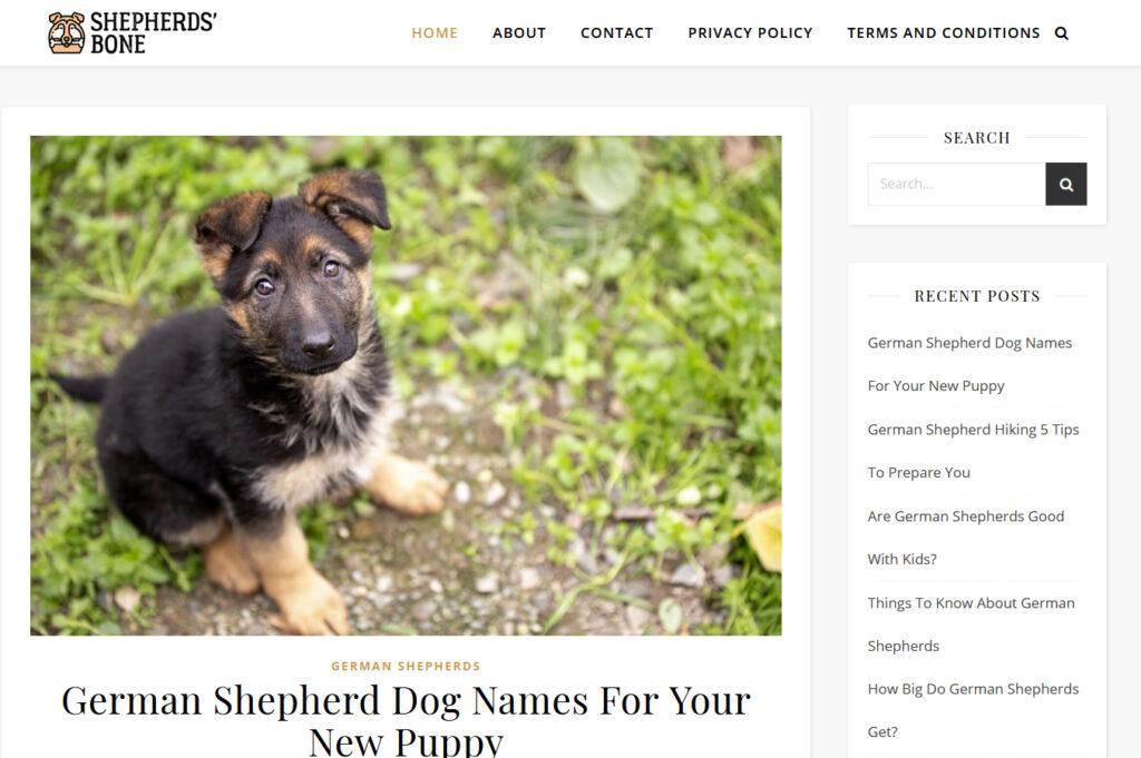Shepherds' Bone Screenshot