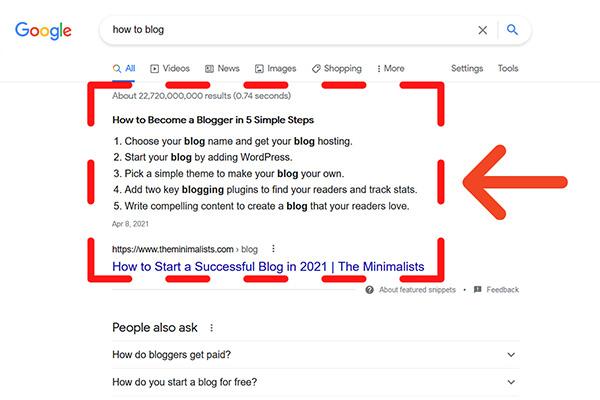 Google Snippet Screenshot