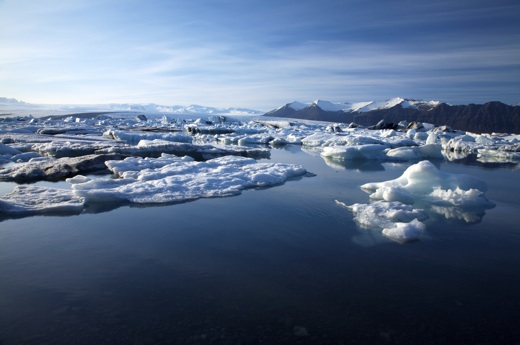 US Bans Commercial Fishing in Arctic as Ice Recedes