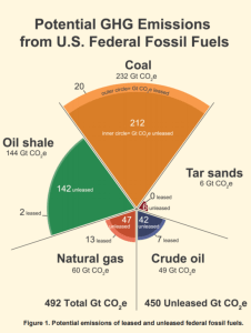 fossil fuels and coal