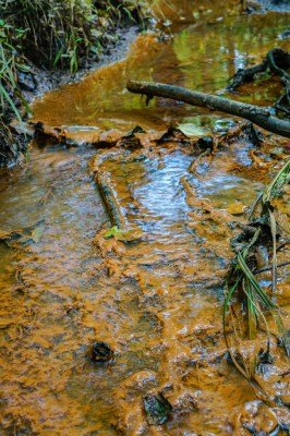 polluted stream by waterkeeper alliance