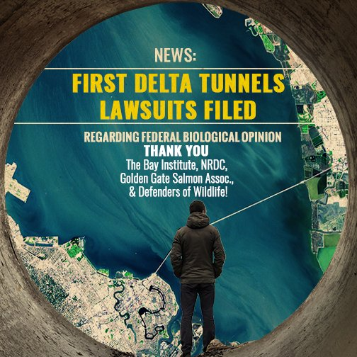 Delta Tunnels project slammed by an avalanche of lawsuits