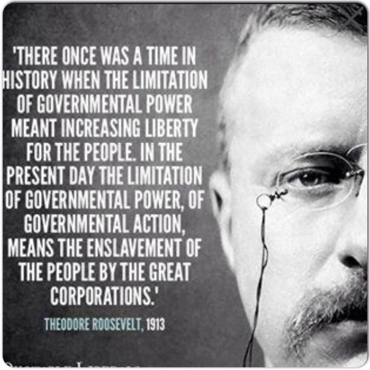 Theodorerooseveltteddyrooseveltquotes Red Green And Blue Mesmerizing Teddy Roosevelt Quotes