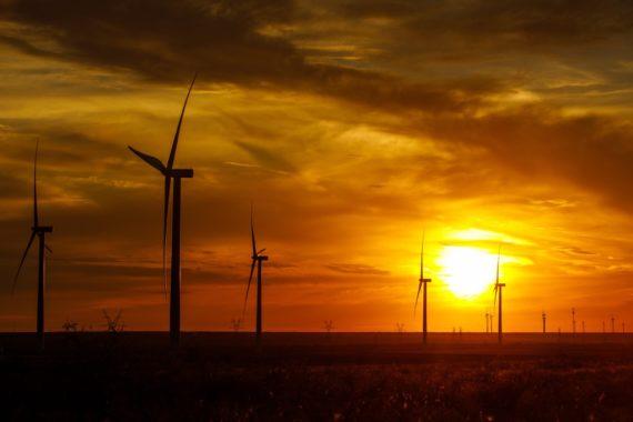 Texas - the Amazon Wind Farm